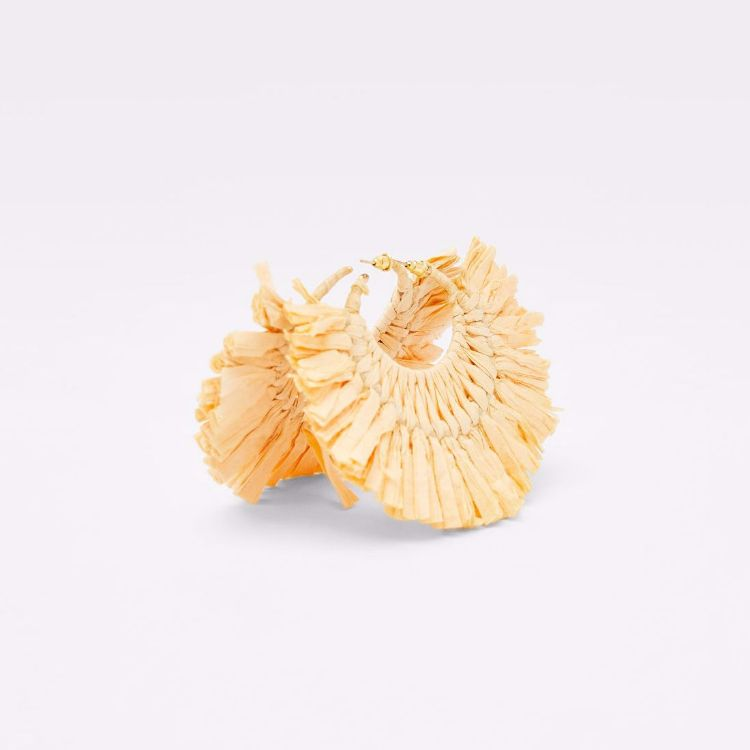 Picture of Shine Earrings